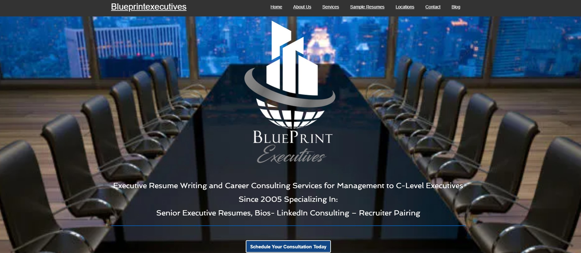 10 Best Resume Writers - screenshot of BluePrint Executives' homepage